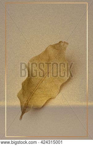 Gold frame with a dried green leaf on a beige background