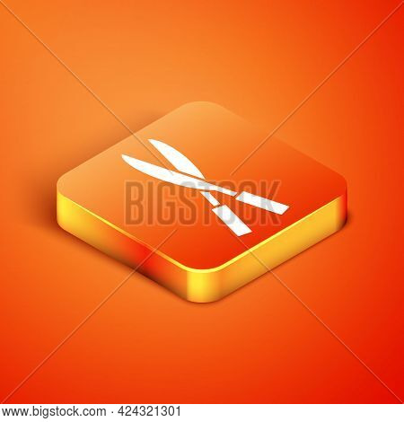 Isometric Gardening Handmade Scissors For Trimming Icon Isolated On Orange Background. Pruning Shear