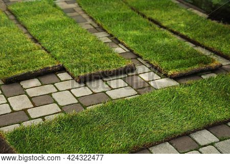 Unrolled Grass Sods On Pavement In Backyard