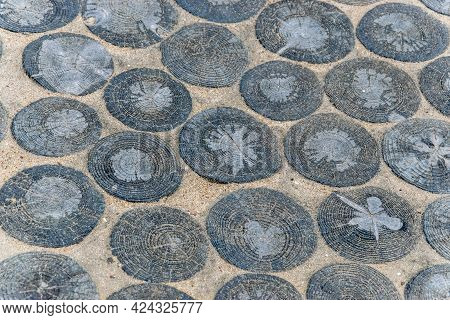 Pathway Of Wooden Round Logs. Garden Architecture, Pathway Accessory