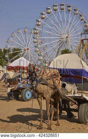 Pushkar, Rajasthan, India - November 6, 2008: Ferris Wheels At The Annual Pushkar Fair In Rajasthan,