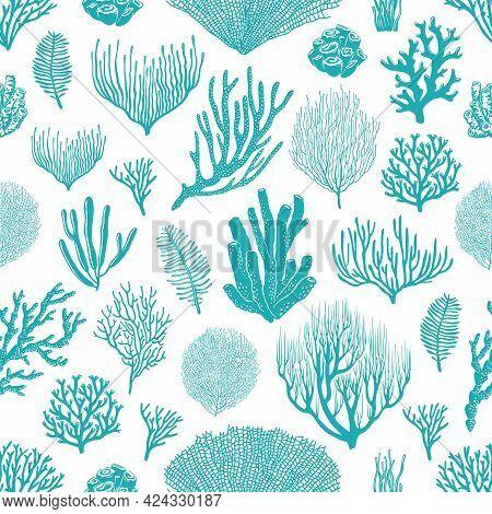 Sea Corals, Sponges And Seaweed Seamless Pattern. Marine Life Background, Ocean Bottom Species, Aqua