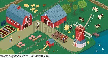 Dutch Farm Barnyard Along Canal With Windmill Grazing Cows Sheep Chicken Laying House Growing Vegeta