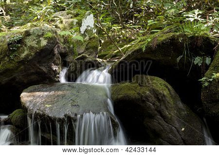 Lower Corner Rock Creek