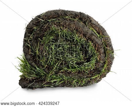 Roll Of Grass Sod On White Background