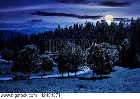 Mountainous Countryside Landscape At Night. Trees On The Meadow Along The Road. Coniferous Forest On