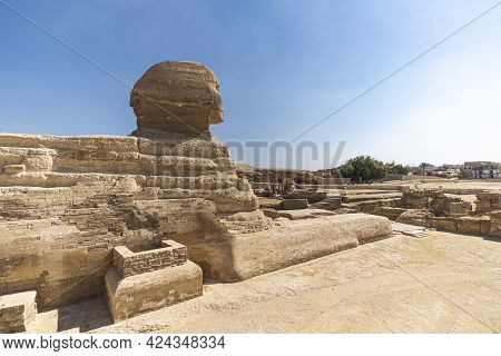 Sphinx Egypt Portrait. Portrait Of The Great Sphinx Of Egypt Close. Egypt, Giza. Side View, Rear Vie
