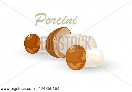 Organic Product, Wild Raw Fungus, Natural Healthy Nutrition, Vegetarian Ingredient. Vector Botanical