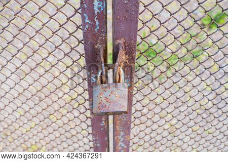 The Old Mesh Gate Is Closed With A Metal Padlock. There Are Traces Of Paint And Foci Of Corrosion. A