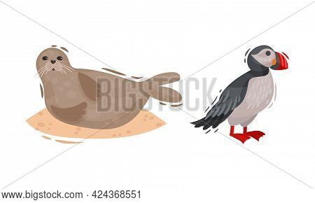 Iceland Symbols With Atlantic Puffin And Sea Calf Vector Set