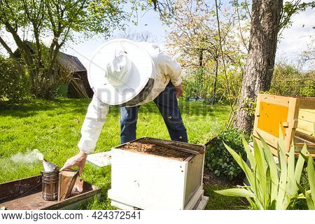 Beekeeper On Apiary. Beekeeper Is Working With Bees And Beehives On The Apiary. To Restack A Hive, T