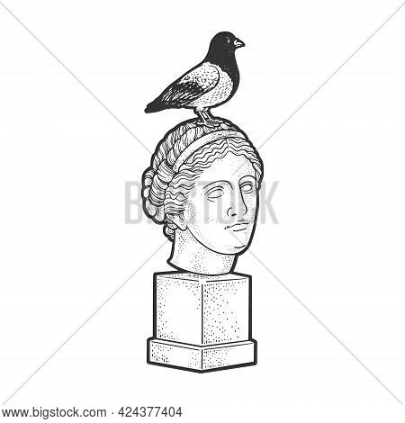 Dove Pigeon Sitting On The Head Of A Statue Line Art Sketch Engraving Vector Illustration. T-shirt A