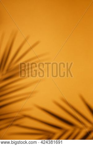 Tropical Palm Plant Shadow On Bright Orange Background With Blank Space.top View Of Tropical Leaf Sh