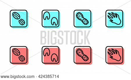Set Line Human Footprints Shoes, , Horse Paw And Alligator Crocodile Icon. Vector