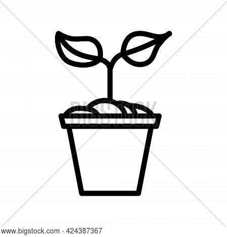 Plant In The Pot Flat Line Icon. Flower Plant, Gardening Simple Vector Illustration. Outline Sign Fo