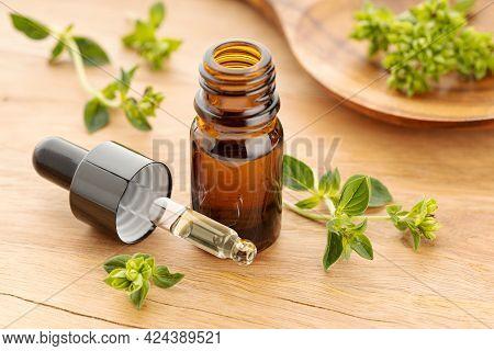 Oregano Essential Oil On Bottle And Fresh Oregano On Wooden Table. Origanum Vulgare Oil