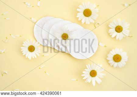 White Chamomile And Cotton Pads On A Yellow Background With Petals. Cosmetic Cotton Cotton Pads For
