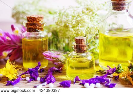 Medicinal Herbs, Oils In Small Bottles Homeopathy. Selective Focus.