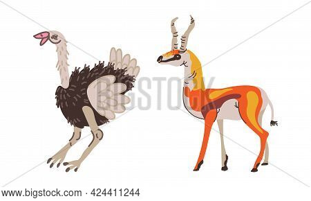 Feathered Ostrich And Horned Gazelle As African Animal Vector Set