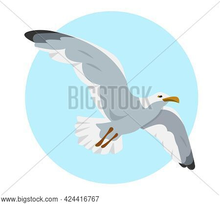 Gray And White Seagull In Sky. Flying Gull. Sea Bird Cartoon Icon Vector Illustration.