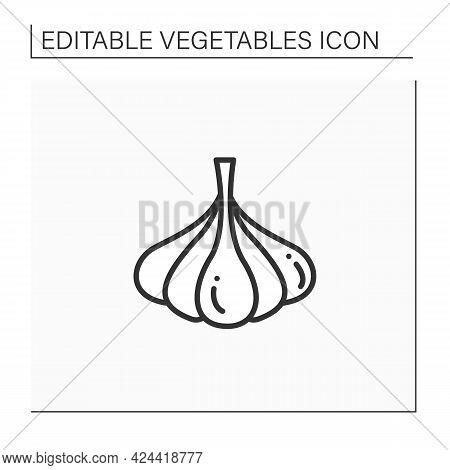 Garlic Line Icon. Special Species For Dishes. Improve Food Taste. Dietary Food. Vegetarian, Healthy