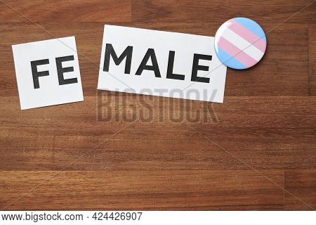 Female Word Printed On A Piece Of Paper, Divided, With A Pin Button In The Colors Of The Trans Pride