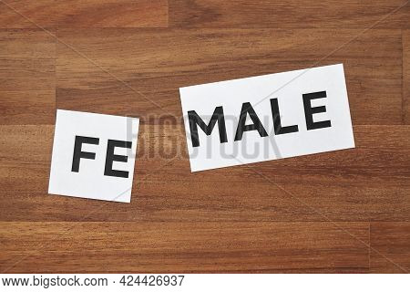 Female Word Printed On A Piece Of Paper, Divided. Conceptual Image With No People About Gender Ident