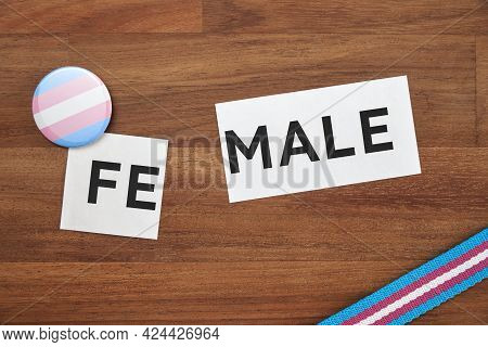 Female Word Printed On A Piece Of Paper, Divided, With Trans Pride Flag Symbols. Conceptual Image Wi