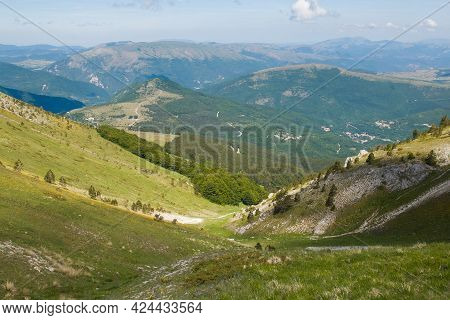 View Of Green Valley Over Frontignano In The Marche Region, Italy