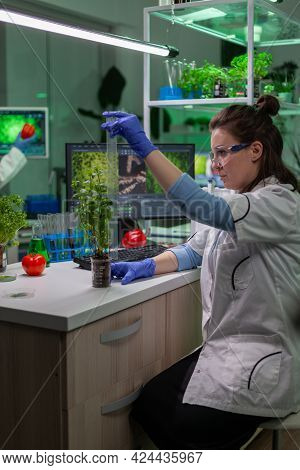 Researcher Woman Measuring Eco Sapling While Observing Biological Transformation. Scientist Biologis