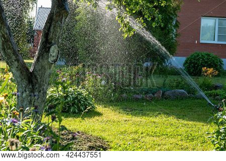 Smart Garden Activated With Full Automatic Sprinkler Irrigation System Working Early In The Morning