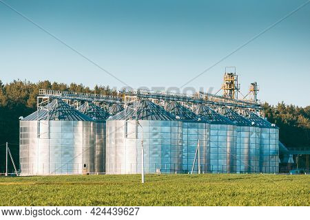 View Modern Granary, Grain-drying Complex, Commercial Grain Or Seed Silos In Sunny Spring Rural Land