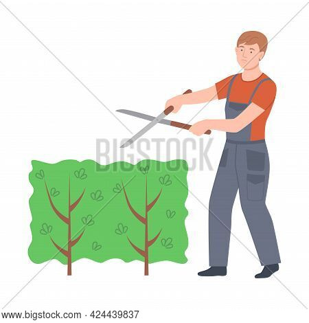 Male Farmer With Shears Pruning Bush Growth In The Garden Vector Illustration