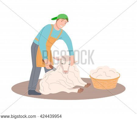 Happy Male Farmer Shearing Sheep And Gathering Wool In Wicker Basket Vector Illustration