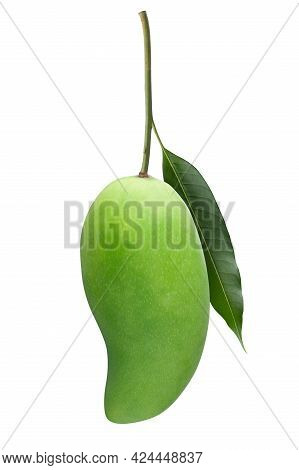 Green Mango Isolated On White Background. Clipping Path.