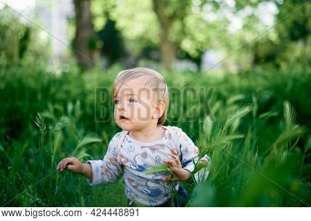 Little Kid Sits In The Tall Grass. Portrait