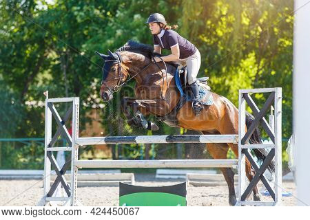 Young Horse Rider Girl Jumping On Show Jumping