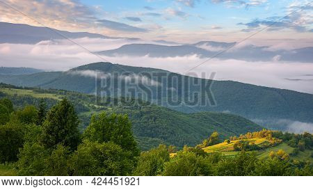 Mountainous Rural Landscape At Dawn. Trees And Agricultural Fields On Hills Rolling In To The Distan