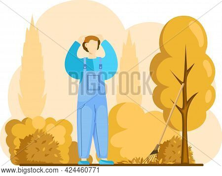 Man In Overalls Gathering Crops Or Seasonal Harvest, Remove Leaves With Rake, Works On Farm. Agricul