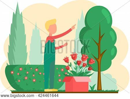 Man Cultivating Plants On Backyard Flowers On Beautiful Flower Bed, Enjoying Red Tulips In Spring Ga