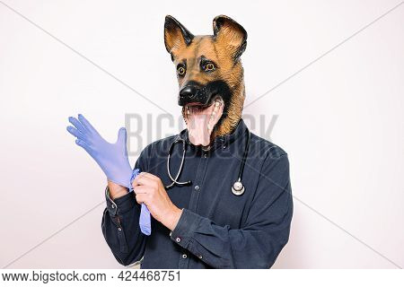 Person With A Dog Mask And A Stethoscope On His Neck Wearing Latex Gloves On White Background, Conce