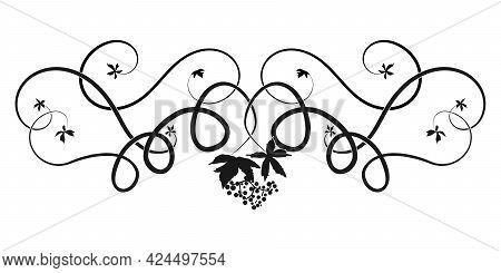 Pattern Ivy Vine Woven Tree Element. Sketch Doodle