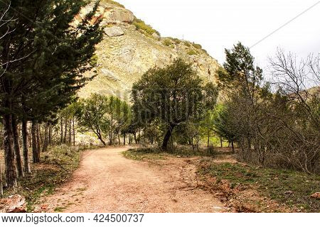 Mountain Landscape And Path Between With Green Vegetation In Spring In Castilla -la Mancha, Spain