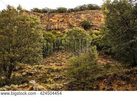 Mountain Landscape With Green Vegetation In Spring In Castilla-la Mancha, Spain