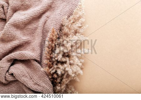 Reed Pampas With Beige Warm Knitted Fabric On Beige Craft Paper Background. Beige Frame Background W