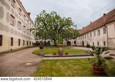 Opocno Castle, Renaissance Chateau, Palms And Plants In Tubs, Italian Garden, Beige Plaster, Windows