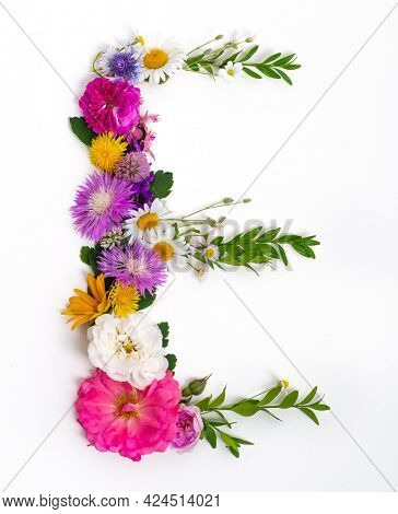 Floral summer font. Concept alphabet design, letter E. Seasonal decorative beautiful type mades of different multi-colored blooming flowers and grass. Natural summertime print