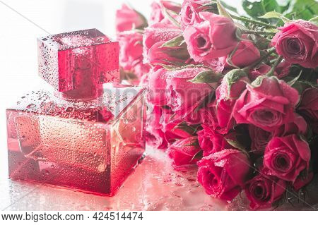 Burgundy Square Perfume Bottle On Glossy Surface With Delicate Pink Roses And Water Drops. Eau De To