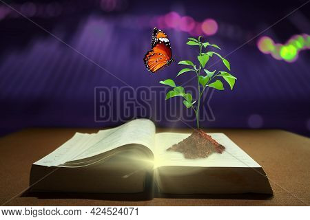 Young Plant Of Knowledge With Soil Planting And Butterfly On Opening Old Book With Magic Shine. Gain