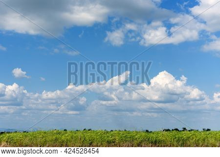 Tropical Summer Blue Sky Fluffy White Cloud Summertime On Light Sunny Day Cloudscape. Clear Bright B
